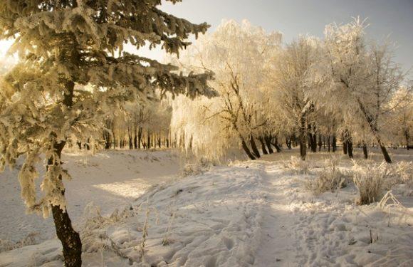 Последний день зимы 2019 сегодня 28 февраля. Приметы, поздравления, традиции