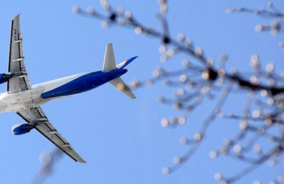 Самолет Airbus А-321 совершил аварийную посадку в Подмосковье